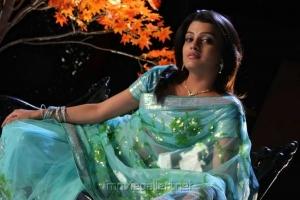Actress Tashu Kaushik New Photos in Light Blue Saree