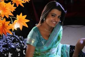 Actress Tashu Kaushik Hot Photos in Light Blue Net Saree
