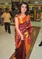 Tashu Kaushik in Saree Stills