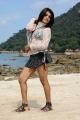 Telugu Actress Tashu Kaushik Hot White Dress Pics
