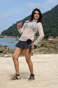 Actress Tashu Kaushik Hot Spicy Pics