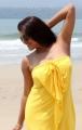 Tashu Kaushik Hot Photoshoot Stills at Beach