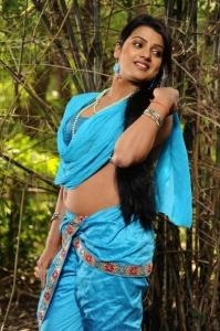 Actress Tashu Kaushik Latest Hot Pics in Telugabbai Movie
