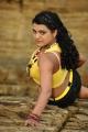 Tashu Kaushik Hot in Telugu Abbai Movie Stills