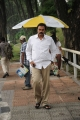 Actor Nagababu at Telugu Abbai Movie Working Stills