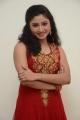 Telugu Actress Vishnu Priya Cute Stills