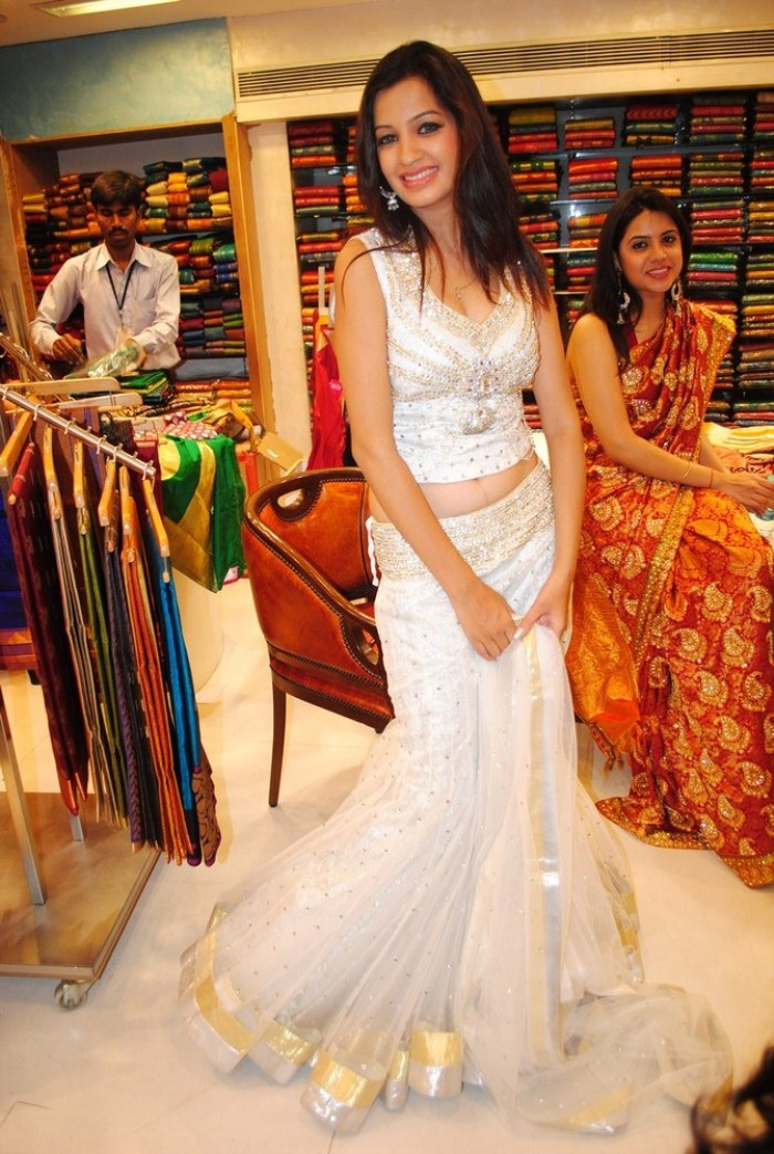 Telugu Model Diksha Pictures