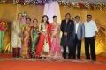 Priyadharshan @ TG Thyagarajan son Senthil Dhasha Wedding Reception Stills
