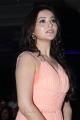 Actress Ragini Nandwani at Thalaiva Movie Audio Release Stills