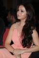 Actress Ragini Nandwani at Thalaivaa Movie Audio Release Stills