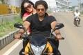 Nikesha Patel, Bas in Thalaivan Tamil Movie Stills