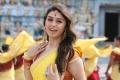Actress Hansika Motwani in Theeya Velai Seiyyanum Kumaru Movie New Photos