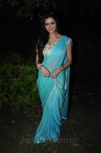 Actress Meenakshi Dixit @ Tenali Raman Movie Audio Launch Stills