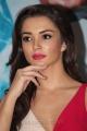 Actress Amy Jackson @ Theri Movie Press Meet Photos