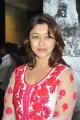 Actress Payal Ghosh at Therodum Veedhiyile Movie Audio Launch Stills