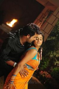 Krishna, Priyamani in Thikka Movie Hot Stills