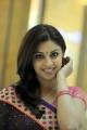Actress Richa Gangopadhyay in Thimmiri Telugu Movie Stills