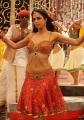 Hot Mallika Sherawat Item Song in Thimmiri Telugu Movie Stills