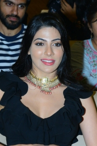 Actress Nikki Tamboli @ Thipparaa Meesam Pre Release Event Stills