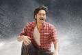 Actor Dhanush in Thodari Movie Photos