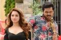 Tamanna, Karthi in Thozha Tamil Movie Stills