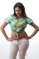 Actress Haripriya in Thulli Ezhunthathu Kadhal Stills