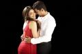 Vijay, Kajal in Thuppakki Movie Photos