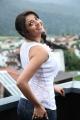 Actress Kajal Agarwal in Tiger Vishva Movie Stills