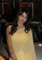 Sanjana Hot in Saree at TMC Dhanteras 2012 Special Draw Photos