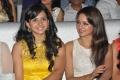 Rakul Preet Singh, Shanvi @ Tollywood Cinema Channel Opening Stills