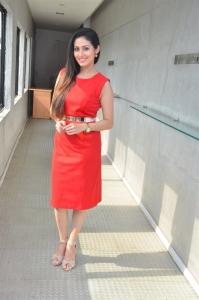 Actress Sadha @ Torch Light Movie Press Meet Stills