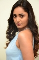 7 Movie Heroine Tridha Choudhury Photos