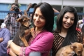Amala, Anuja Iyer at Blue Cross Building Launch Stills