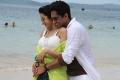 Trisha & Siddharth in Aranmanai 2 Movie Stills