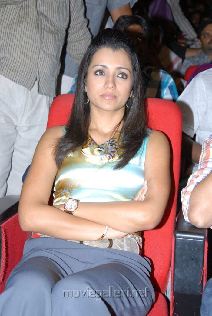 Cute Trisha at Dammu Audio Launch