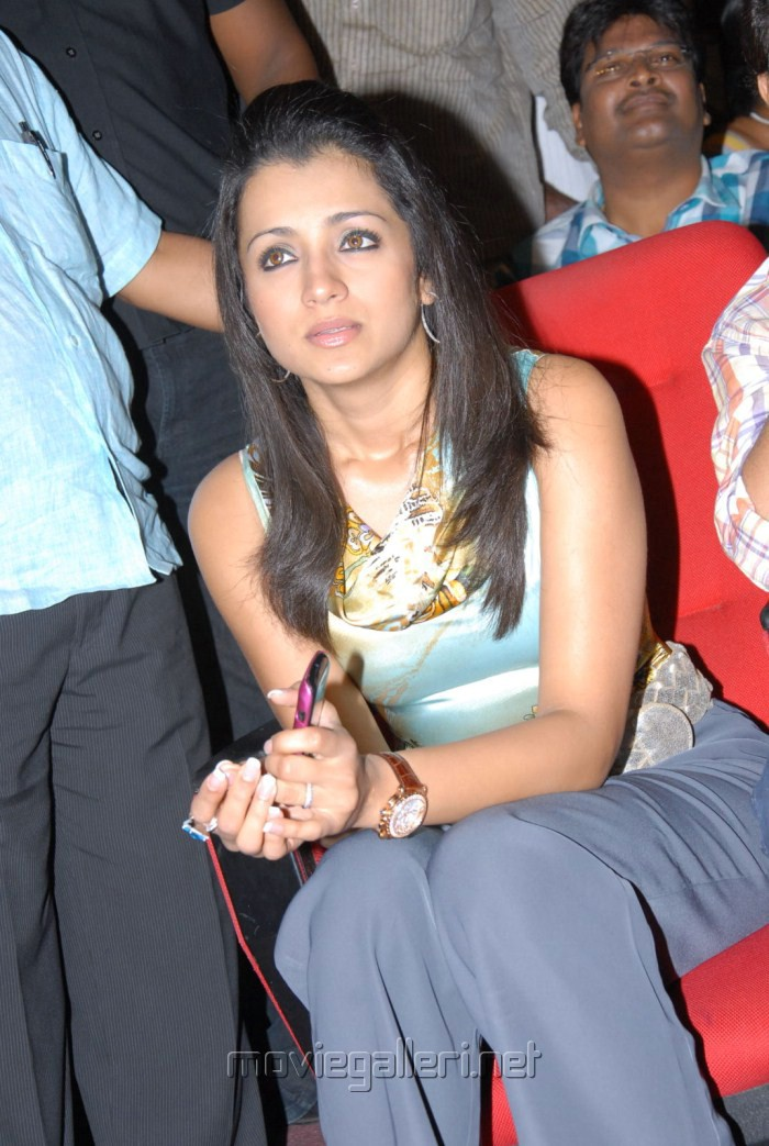 Trisha at Dammu Audio Function