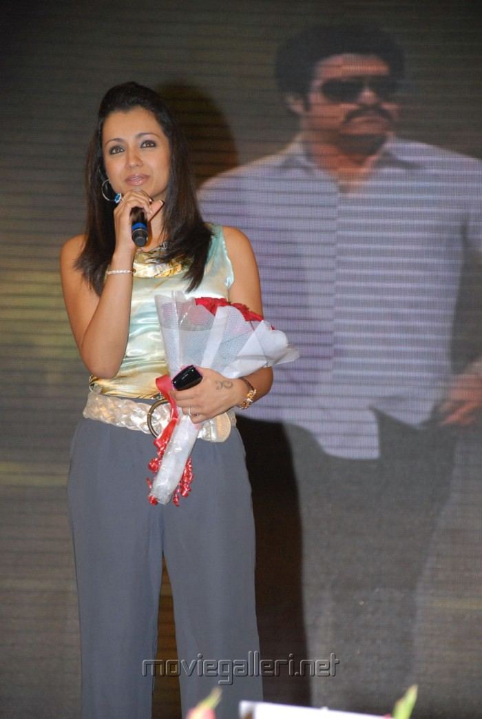 Trisha Krishnan at Dammu Audio Release