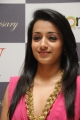 Tamil Actress Trisha Close Up Photos