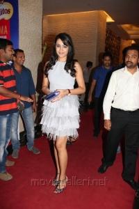 Actress Trisha in White Mini Gown Photos @ SIIMA 2013 Pre-Party