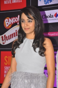 Beautiful Trisha in White Gown at SIIMA 2013 Pre-Party