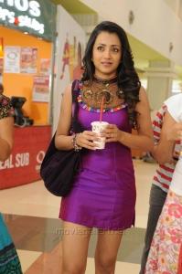 Actress Trisha Hot Photos in Dammu Movie