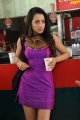 Trisha Latest Hot Photos in Dammu Movie