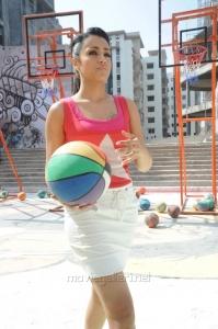 Dammu Movie Heroine Trisha Hot Photos