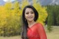 Trisha Latest Saree Stills in Bodyguard