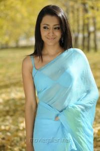Trisha Hot Saree in Bodyguard