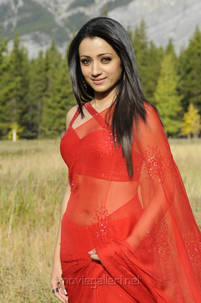 picture 172733 trisha hot saree in bodyguard new movie