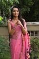 Actress Trisha Hot Saree Stills in Kalavathi Movie