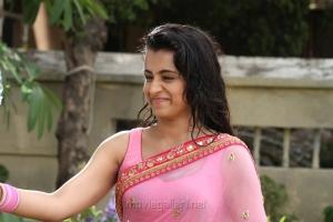 Kalavathi Trisha Saree Hot Stills