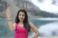 Hot Trisha in Dammu HD Wallpapers
