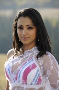 Trisha White Saree Hot Pictures
